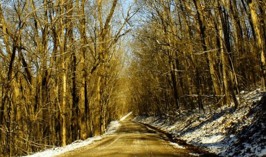 Shades of Death Road, Avella, PA