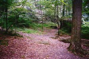 Jumonville Glen Historical Site