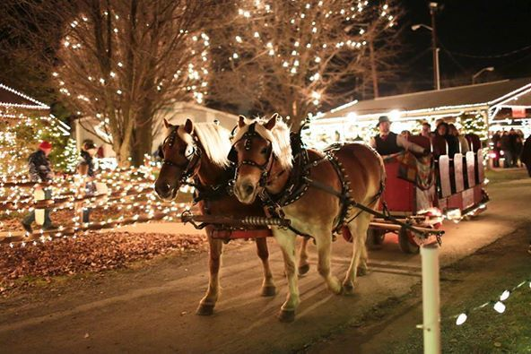 Visitors enjoy a sleigh ride at Overly's Country Christmas